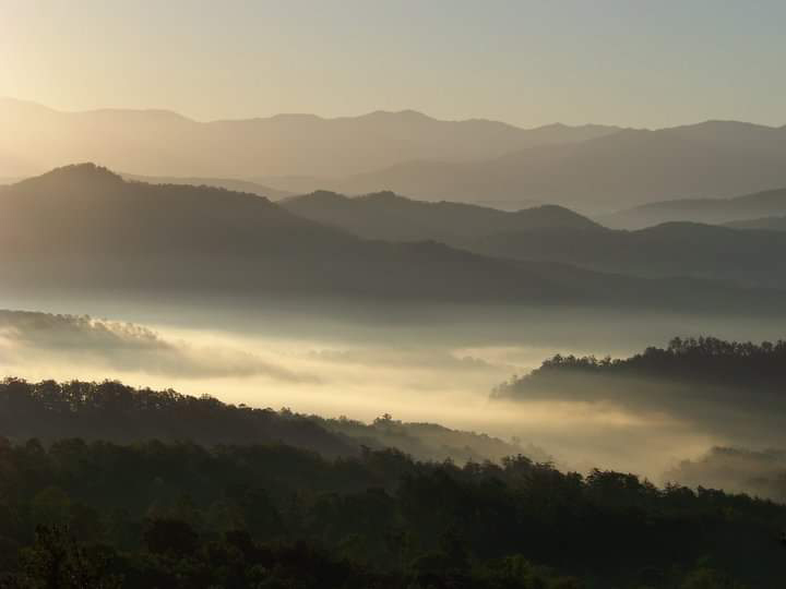 Early morning mountain mist from Wears Valley, Tennessee.SUBMITTED by Sheila Johnston, Ozark.